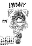 Calendar with dry brush lettering. January 2018. Dog with knitted scarf. Cute pug portrait. Vector illustration. Calendar with dry brush lettering. January 2018 Stock Image