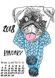 Calendar with dry brush lettering. January 2018. Dog with knitted scarf. Cute pug portrait. Vector illustration. Calendar with dry brush lettering. January 2018 Stock Images
