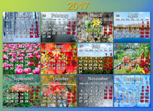 Calendar for 2017 in English with twelve photo of nature. Calendar for 2017 in English with photo of nature for every month Royalty Free Stock Images
