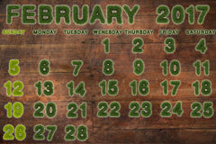 Calendar for February 2017 on wood background. 3d rendering green grass Royalty Free Stock Photos