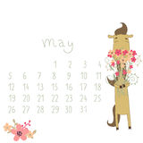 Calendar For May 2014. Year Of The Horse. Royalty Free Stock Photo
