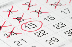 Calendar. Fragment shaped sheet with crossed-out numbers Royalty Free Stock Photography