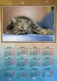 Calendar 2017. Great calendar for new year Royalty Free Stock Photography