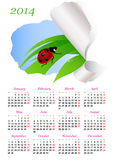Calendar for 2014. With green grass and ladybird stock illustration