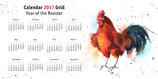 Calendar grid 2017 with hand-drawn watercolor rooster Stock Photos