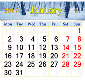 Calendar for January 2017 with birch grove Stock Image