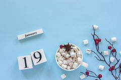 Calendar January 19 Cup of cocoa, marshmallows and branch berries stock image