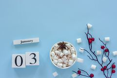 Calendar January 3 Cup of cocoa, marshmallows and branch berries royalty free stock photos