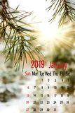 Calendar for January 2019 on spruce branch background close-up. Calendar for January 2019 on spruce branch background royalty free stock photography