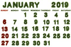 Calendar for January 2019 on white background,. 3d rendering green grass stock illustration