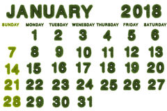 Calendar for January 2018 on white background. 3d rendering green grass vector illustration