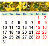 Calendar for July 2017 with flowers of St.-John's wort Royalty Free Stock Photos