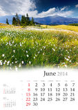 2014 Calendar. June. Royalty Free Stock Image