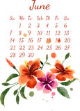 Calendar for june 2015. Calendar for june  2015 with a bouquet of flowers painted in watercolor Stock Image