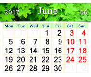 Calendar for June 2017 with image of maple's leaves Royalty Free Stock Photos
