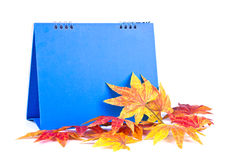Calendar with maple Royalty Free Stock Images
