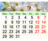 Calendar for May 2017 with blooming cherry tree Stock Images