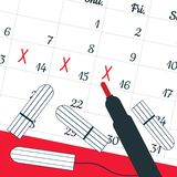 A calendar with the menstrual days marks and menstrual tampons. Vector illustration of blood period calendar and a red pen. Menstr stock illustration