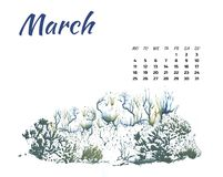 Calendar 2019 nature, forest in different season on white background royalty free stock photo
