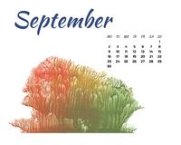 Calendar 2019 nature, forest in different season on white background stock photography