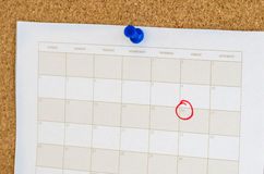 Calendar Page on a Cork Noticeboard Stock Photography