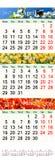 Calendar para April May June 2017 com imagens naturais Imagem de Stock