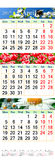 Calendar para April May June 2017 com imagens naturais Foto de Stock Royalty Free