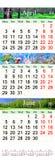 Calendar para April May June 2017 com imagens naturais Imagem de Stock Royalty Free