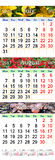 Calendar para August October 2017 com imagens coloridas diferentes Imagens de Stock Royalty Free