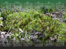 Calendar for 2020. stock illustration