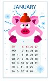 Calendar for 2019 pig;new year; January; stock illustration