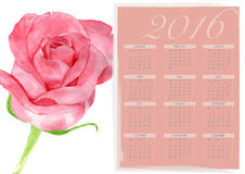 Calendar 2016 Pink rose painting Stock Image