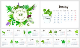 2018 Calendar Planner Design. Culinary herbs. Mint, oregano, rosemary, sage savory seasoning basil thyme Royalty Free Stock Images