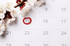 The calendar Planning of pregnancy trying to have baby. Circling the date of the 15th day in the calendar. Concept of fertility chart, trying to have baby stock images