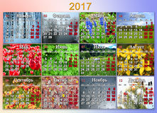 Calendar for 2017 in Russian with twelve photo of nature Royalty Free Stock Photos