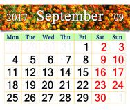 Calendar for September 2017 with marigolds Royalty Free Stock Photos