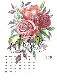 Calendar 2017. Templates with watercolor illustations. Set of 12 Months. Hand drawn watercolor flowers and berryes. Modern lettering Stock Photo