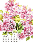 Calendar 2017. Templates with watercolor illustations. Set of 12 Months. Hand drawn watercolor flowers and berryes. Modern lettering Royalty Free Stock Photo