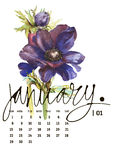 Calendar 2017. Templates with watercolor illustations. Set of 12 Months. Hand drawn watercolor flowers and berryes. Modern lettering Stock Image