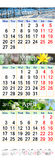 Calendar for three months of 2017 with pictures of nature Royalty Free Stock Photography