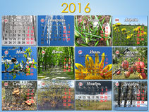 Calendar for 2016 with twelve photo of nature Royalty Free Stock Photo