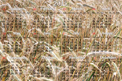 Calendar for 2015 year on the field of wheat Royalty Free Stock Photos