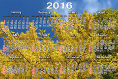 Calendar for 2016 on the yellow maple leaves Stock Photography