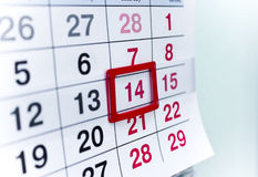 Calendario 14 Immagine Stock