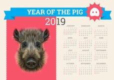 Calendario alla moda del maiale per 2019 Modello di vettore con il concetto Simbolo dell'anno nel calendario cinese realistico Fotografia Stock