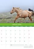 Calendario 2014. Caballo. Marzo Imágenes de archivo libres de regalías
