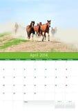 Calendario 2014. Cavallo. Aprile Fotografia Stock Libera da Diritti