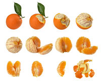 Calendario con 12 immagini Di arance Στοκ Φωτογραφία