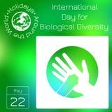 Calendario de la serie Días de fiesta en todo el mundo Evento de cada día del año Día internacional para la diversidad biológica Foto de archivo libre de regalías