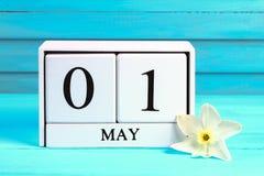 Calendario de madera blanco con el texto: 1 de mayo Flores blancas de narcisos en una tabla de madera azul Día del Trabajo y prim Imagen de archivo